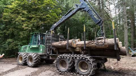 Forst Wald Rückewagen