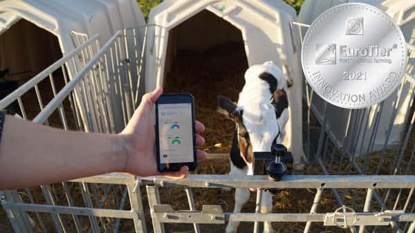 Eurotier Innovation Award Bewgungsmuster von Kälbern erkennen